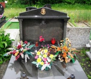 Памятники Украина гранит?